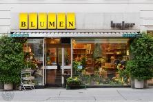 Blumen Bajer: 1030 Wien, Fasangasse 3