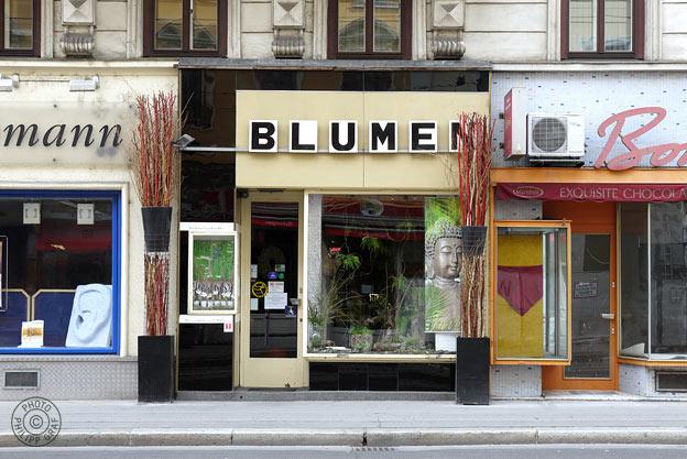 Blumenboutique Helga Prein: 1090 Wien