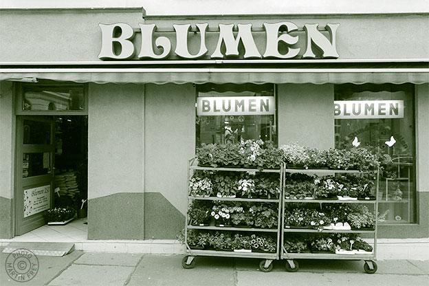 Blumen Claudia: 1160 Wien